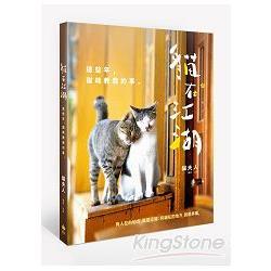 貓在江湖:這些年,貓教我的事