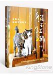 貓在江湖:這些年,貓咪教我的事