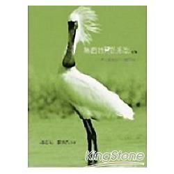 黑面琵鷺的鄉愁(續篇)