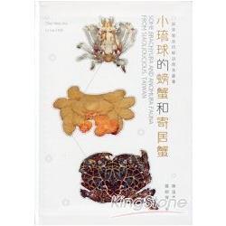 小琉球的螃蟹和寄居蟹