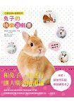兔子的快樂遊戲書