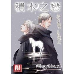 小說積木之戀(全)