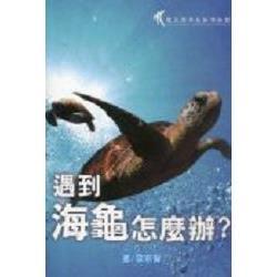 遇到海龜怎麼辦?
