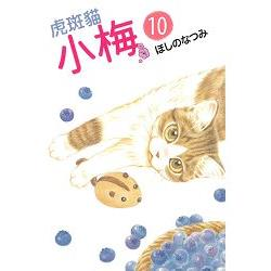 虎斑貓小梅10