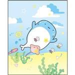 小白鯨萬用小小卡-天空
