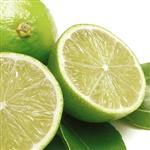 【果之家】新鮮綠皮檸檬10台斤