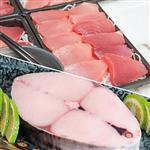 【台灣鑫鮮】印度洋黑鮪魚TORO生魚片16片+澎湖土魠魚500g