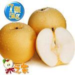 果之家 韓國最高品質梨仙子新高梨XL級7顆入5公斤禮盒(單顆700-750g)