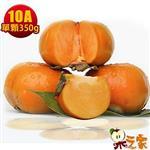 果之家 產地特選高山摩天嶺甜柿禮盒5台斤(10A,單顆9-10兩)