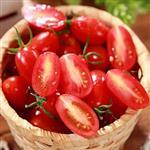 果之家 美濃無毒溫室玉女小番茄8台斤(8小盒入,每小盒1台斤)