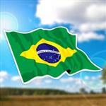 ~國旗 館~巴西國旗飄揚抗UV、防水貼紙2入/Brazil/多國款購
