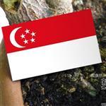 ~國旗 館~新加坡國旗抗UV、防水貼紙2入/Singapore/多國款