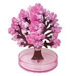 賽先生科學工廠-紙樹開花-(大)神奇櫻花