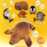 全套6款 休眠海洋動物園 扭蛋 擺飾