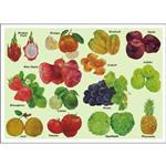 我愛台灣明信片●台灣水果-2