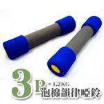 台同健康活力館|3磅泡棉韻律啞鈴組-兩支裝《3P約1.2KG》台灣製造