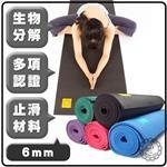 Fun Sport yoga 小秘境修練瑜珈墊-送布蕾歐背袋 (PER環保材質)