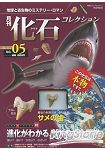 月刊化石收集 Vol.5鯊魚齒特集
