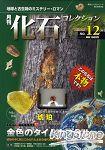 月刊化石收集 Vol.12 地球和古生物的神秘歷史