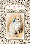 貓咪事典 口袋袖珍版