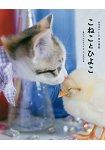 小貓與小雞萌萌寫真集