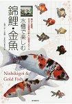 水槽飼養錦鯉.金魚-日本傳統魚的新飼養方式