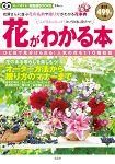 認識花卉-花店花名與贈禮花卉事典