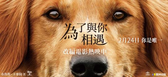 一本狗狗最希望主人看的故事!電影『為了與你相遇』原著小說!