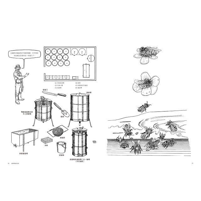 圖解蜜蜂與養蜂:認識蜜蜂的一生,學習如何飼養、愛護蜜蜂,從製作蜂箱到採蜜的全面自學指南