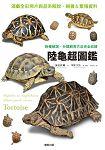 陸龜超圖鑑 物種解說、分類飼育方法完全收錄