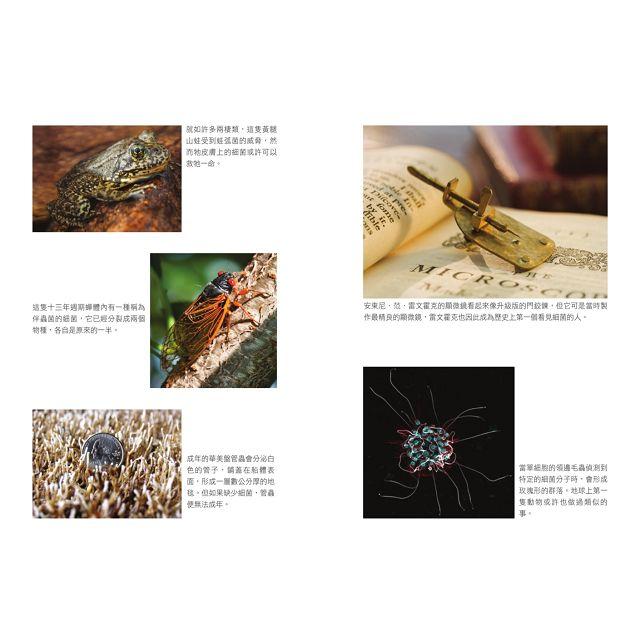 我擁群像:栽進體內的微米宇宙,看生物如何與看不見的微生物互相算計、威脅、合作、保護,塑造大自然的全貌