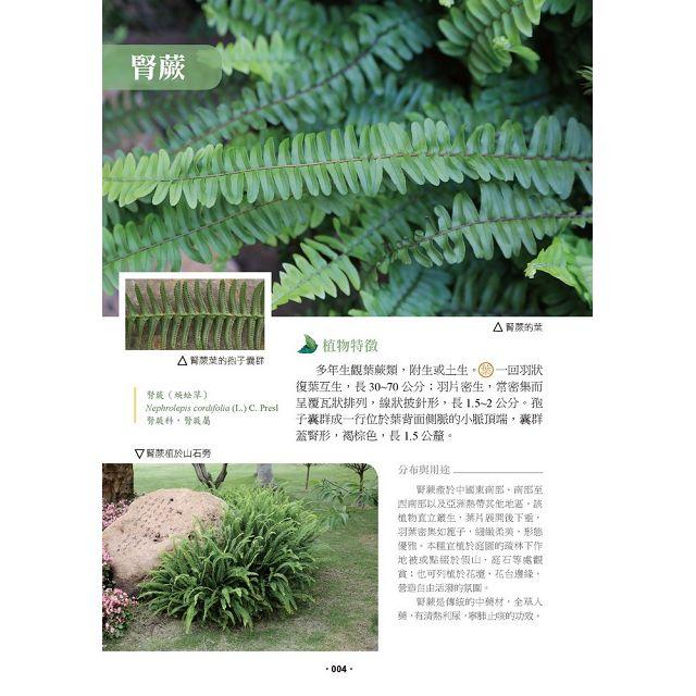 生活常見的花草樹木圖典百科
