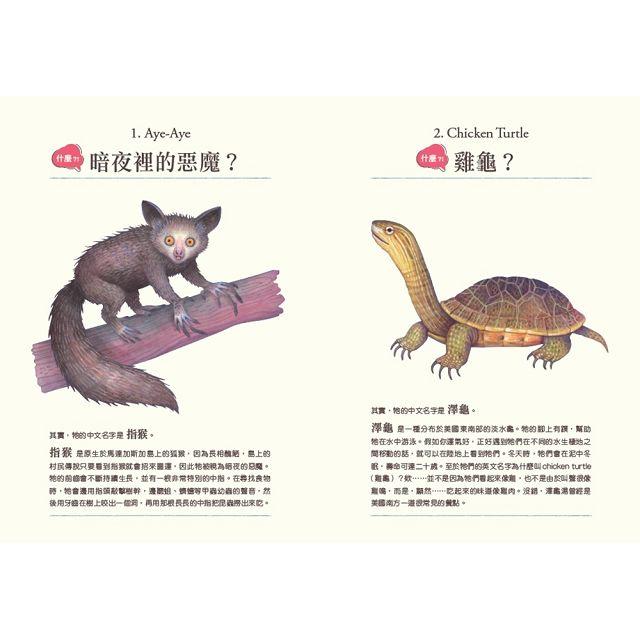 什麼?!居然有這種動物:牠們的名字怪怪的