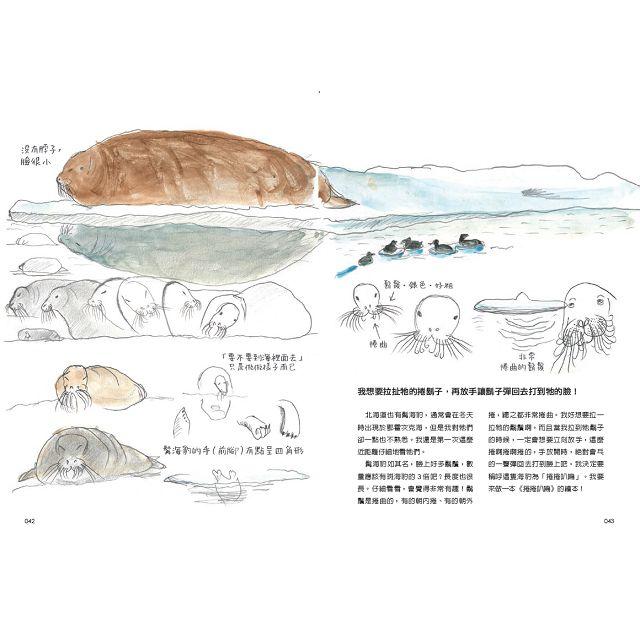 康提基號北極探險記:長征3000公里的北極熊追尋之旅