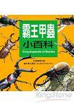 霸王甲蟲小百科:兒童百科 10