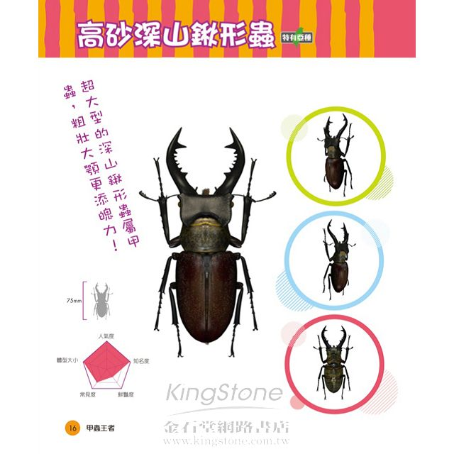 甲蟲王者:50隻最強、最美的台灣獨角仙、鍬形蟲圖鑑