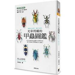 光彩閃耀的甲蟲圖鑑