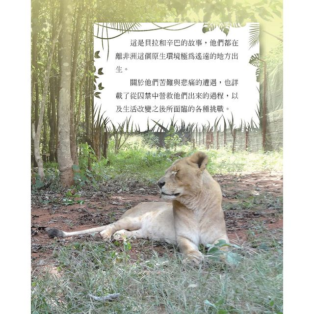 生而自由系列:拯救獅子