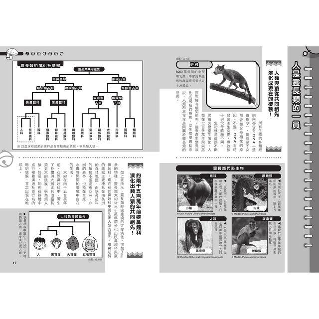 哆啦A夢科學任意門19:人類演化追蹤槍