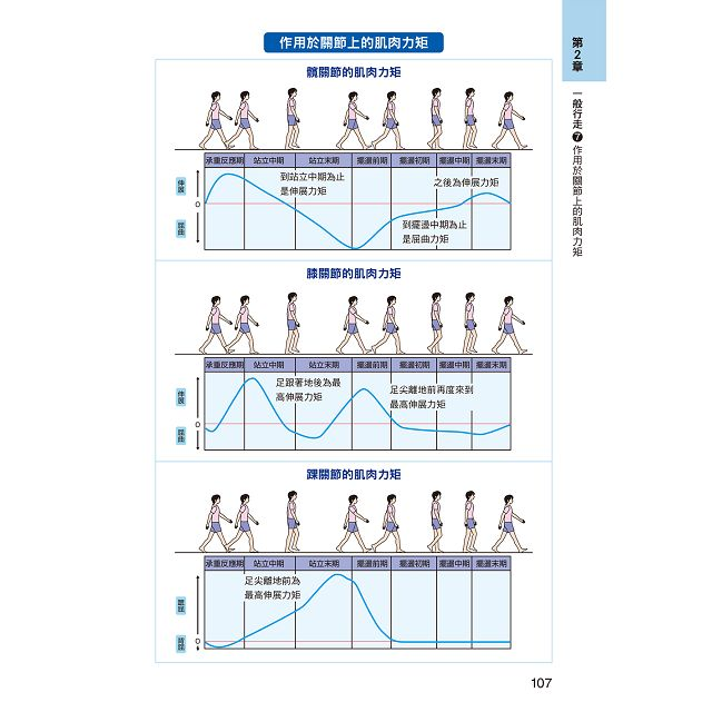 圖解 肌肉與關節 運動‧結構‧保健:醫學、運動休閒系所最佳課外輔助教材!
