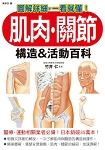 肌肉.關節構造&活動百科