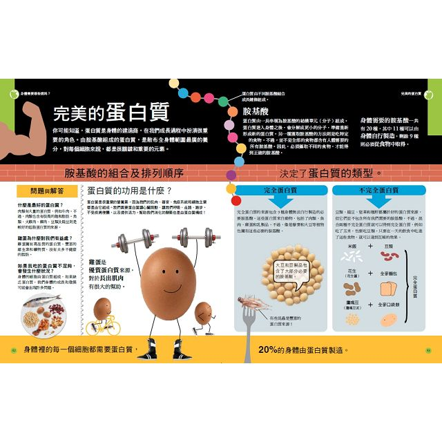 DK全彩圖解 飲食健康小百科:Are you what you eat? 吃什麼,像什麼