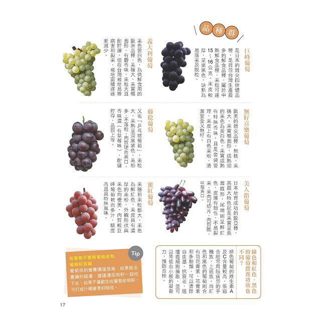 史上最完整水果營養圖鑑