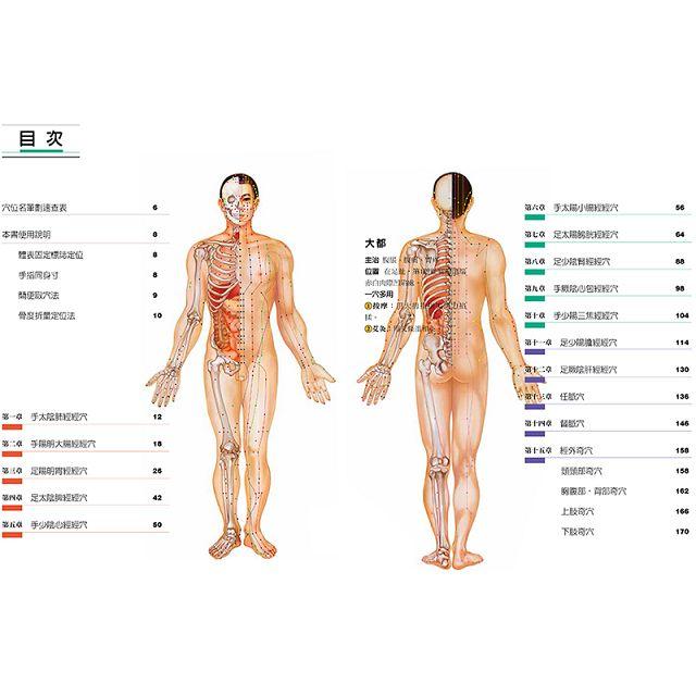 圖解人體實用經絡實手冊:1分鐘找準穴,3分鐘會用穴!艾灸、按摩、刮痧、拔罐、拍打, 五大功能全適用