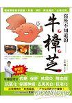 你所不知道的牛樟芝:權威專家教你認識抑癌、保肝、降血脂的「台灣之寶」
