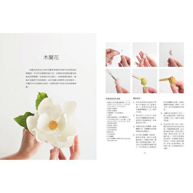 婚禮蛋糕天后賈桂琳的翻糖花裝飾技法聖經:自然系翻糖花萬用公式×20款花朵製作詳解×7款經典婚禮蛋糕