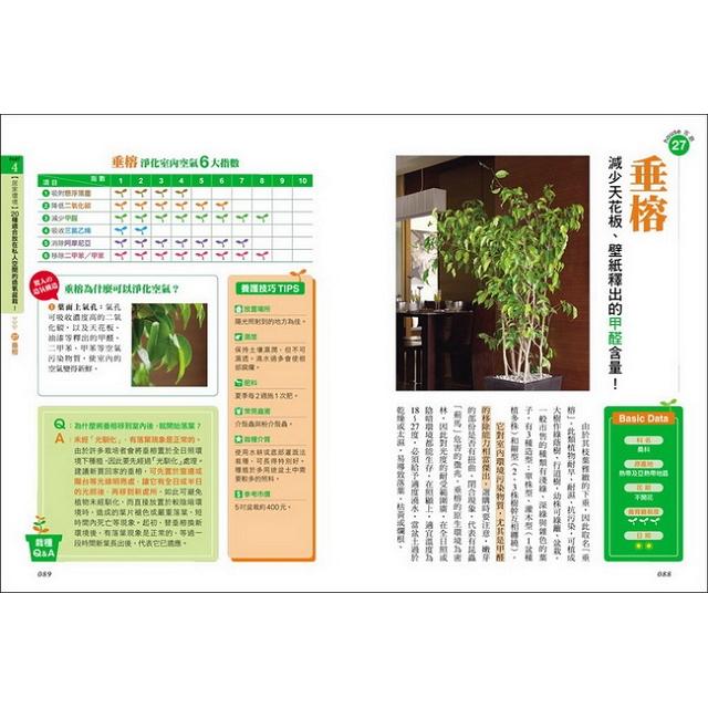淨化空氣的造氧盆栽:揮別空汙,遠離過敏、嗜睡、致癌物,適合居家、辦公環境的40款功能性盆栽