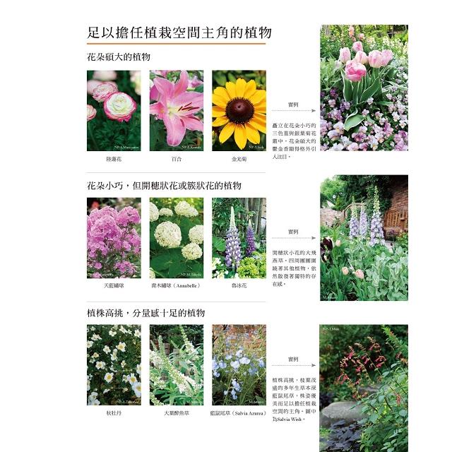 輕鬆規劃草本風花草庭園