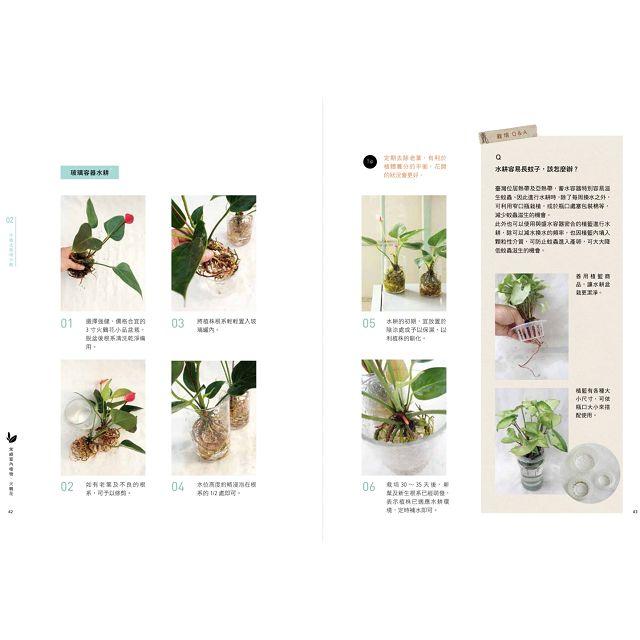 水耕盆栽超好養:無土不招蟲,加水就能活,輕鬆打造室內綠意