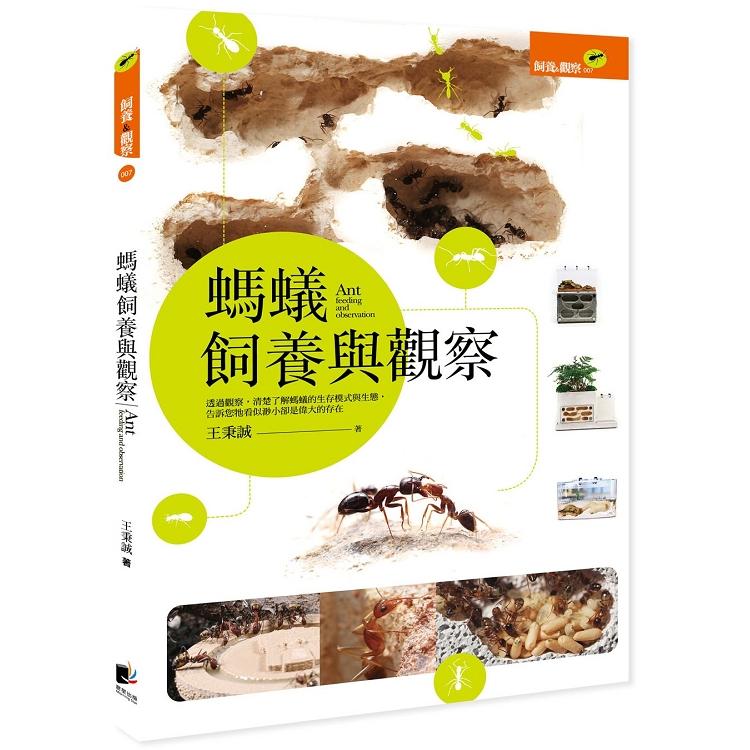 螞蟻飼養與觀察